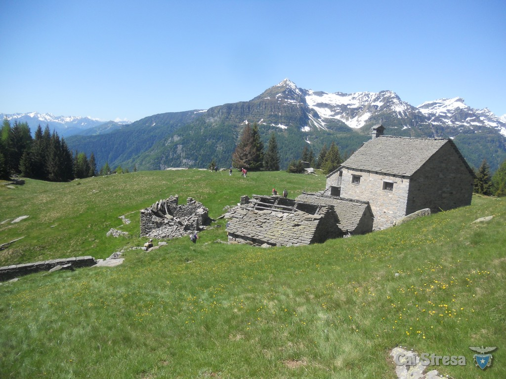 Alpe Genuina (Crodo)